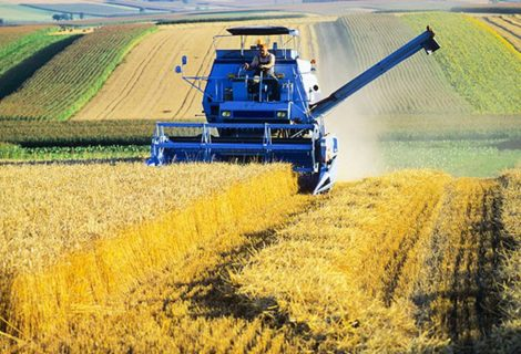 Is French agriculture null and void?